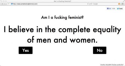 am I a fucking feminist ?
